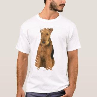 T-shirt Fermez-vous d'un terrier d'airedale