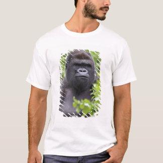 T-shirt Gorille de plaine de Silverback, gorille de