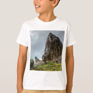 T-shirt grand point peu de point
