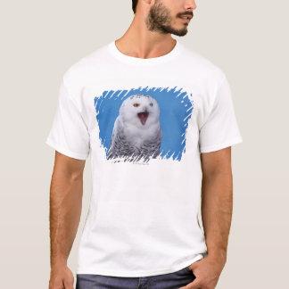 T-shirt hibou neigeux