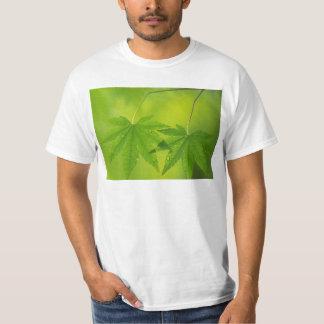 T-shirt homme fond vert
