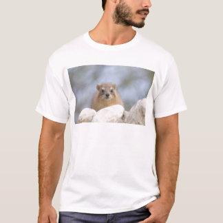 T-shirt Hyrax - lapin de roche israélien