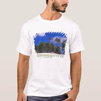 T-shirt Îles Palaos de roche