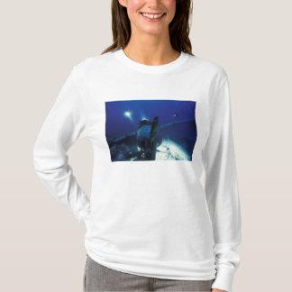 T-shirt La Micronésie, Palaos, site de patrimoine mondial.