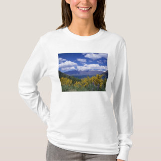 T-shirt Lac Wakatipu et le Remarkables, Queenstown,