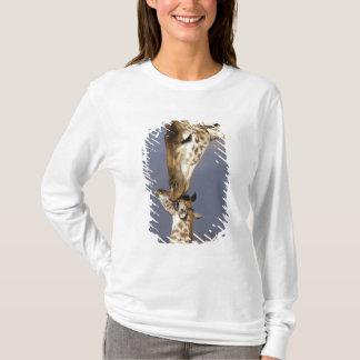 T-shirt L'Afrique, Kenya, masai Mara. Girafes (girafe