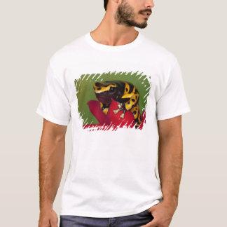 T-shirt L'Amérique du Sud, Venezuela. Plan rapproché de