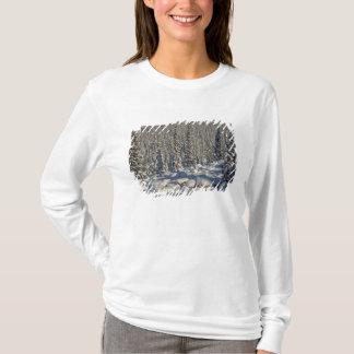 T-shirt Le Canada, Alberta, parc national de jaspe