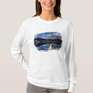 T-shirt Le Canada, Colombie-Britannique, Banff. Arc de