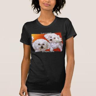 T-shirt Le jaspe et le Cosmo de Randolph