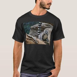 T-shirt Lémur coupé la queue par anneau