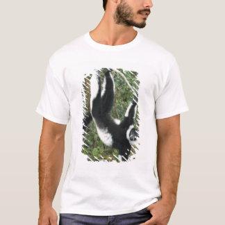 T-shirt Lémur noir et blanc de Ruffed, (Varecia