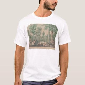 T-shirt Les arbres gigantesques de la Californie (1191)