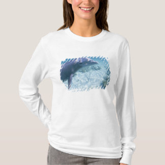 T-shirt Les Bahamas, île de Bahama grande, port franc,