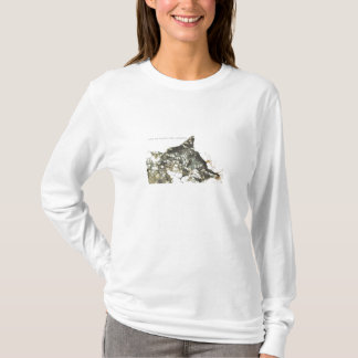 T-shirt Les chats sont des anges avec des favoris