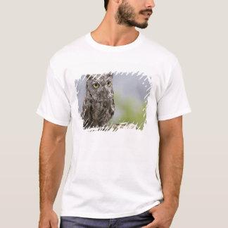 T-shirt Les Etats-Unis, Alaska, Ketchikan. Plan rapproché