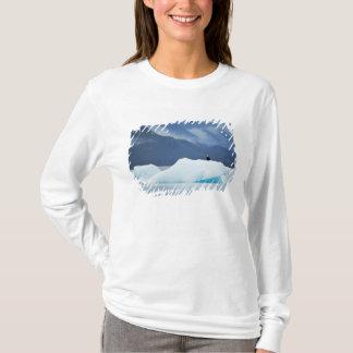 T-shirt Les Etats-Unis, Alaska, passage intérieur. Aigle
