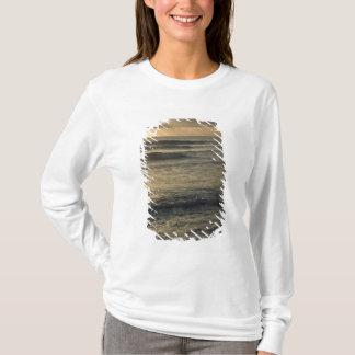 T-shirt Les Etats-Unis, Hawaï, Kauai, côte de sud-ouest,