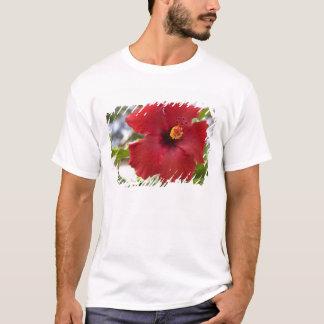 T-shirt Les Etats-Unis, Hawaï, Oahu. La ketmie est