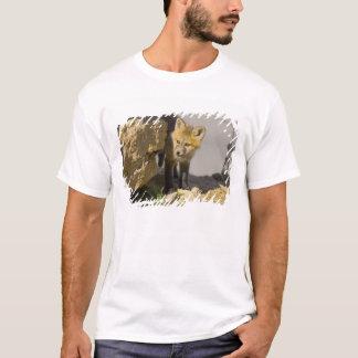 T-shirt Les Etats-Unis, le Colorado, Breckenridge. Jeune