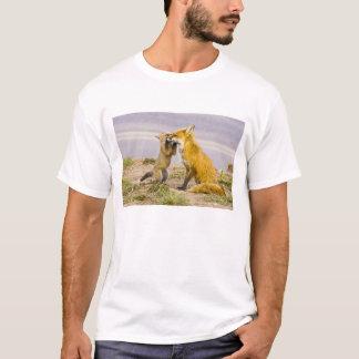 T-shirt Les Etats-Unis, le Colorado, Breckenridge. Mère 2