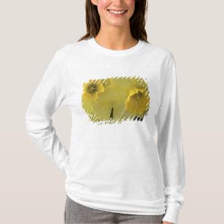 T-shirt Les Etats-Unis, Utah, jonquilles de vallée de