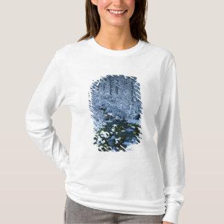 T-shirt Les Etats-Unis, Utah, réserve forestière de
