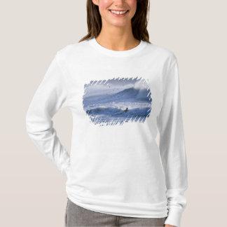 T-shirt L'état de Washington des Etats-Unis, Poussée de