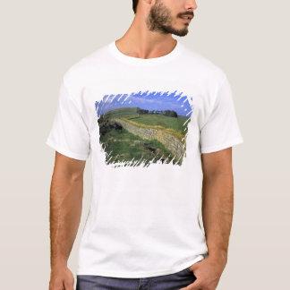 T-shirt L'Europe, Angleterre, le mur de Hadrian. Les