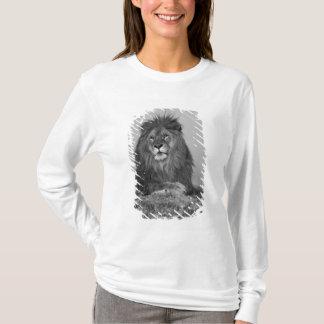 T-shirt Lion africain se reposant sur la falaise de roche