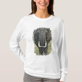T-shirt Loxodonta d'Elephantna d'Africain, jeu de Mara de