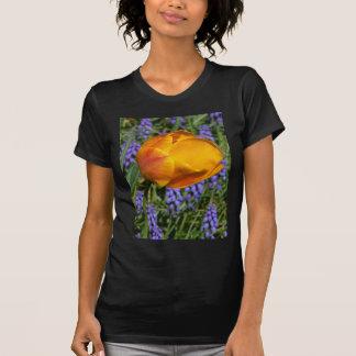 T-shirt Lumière du jour rougeoyante