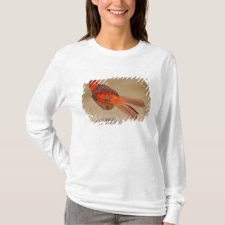 T-shirt Mâle adulte cardinal du nord en vol