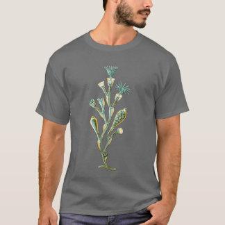 T-shirt Méduses - geniculata d'Obelia