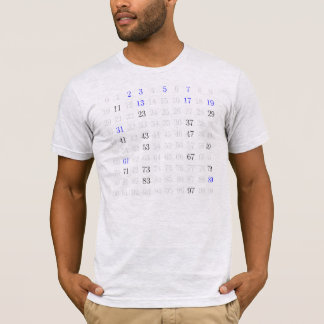 T-shirt Mersenne amorce