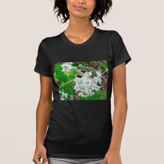T-shirt Milkweed et monarque