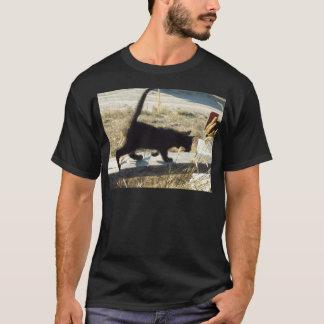 T-shirt minou curieux