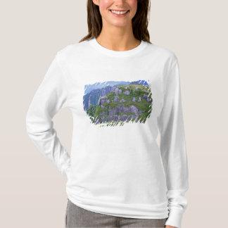 T-shirt Mt. Nagata, Yakushima, Kagoshima, Japon