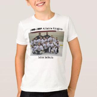 T-shirt Nashville 380, 2008-2009 Atlanta adoube, des