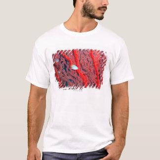 T-shirt Natation de poissons dans le corail