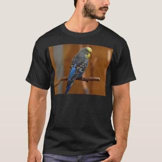 T-shirt Oiseau de perruche