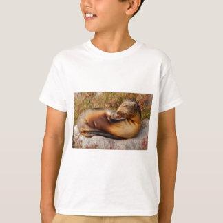 T-shirt Otarie de Galapagos