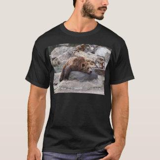 T-shirt Ours gris se reposant sur la roche