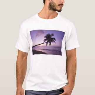 T-shirt Palmier solitaire au coucher du soleil, plage 2 de