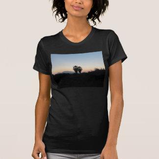 T-shirt Palmiers à la chemise de coucher du soleil