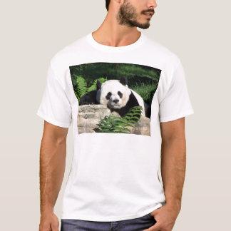 T-shirt Panda géant faisant une sieste