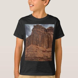T-shirt Parc national de voûtes l'organe