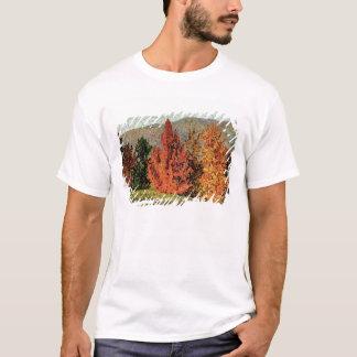 T-shirt Paysage d'automne, c.1903 (huile sur la toile)