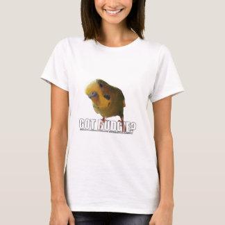T-shirt Perruche obtenue ?