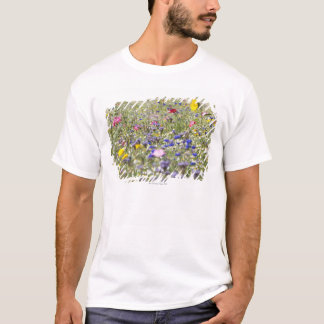 T-shirt Petherton du sud, Somerset, R-U